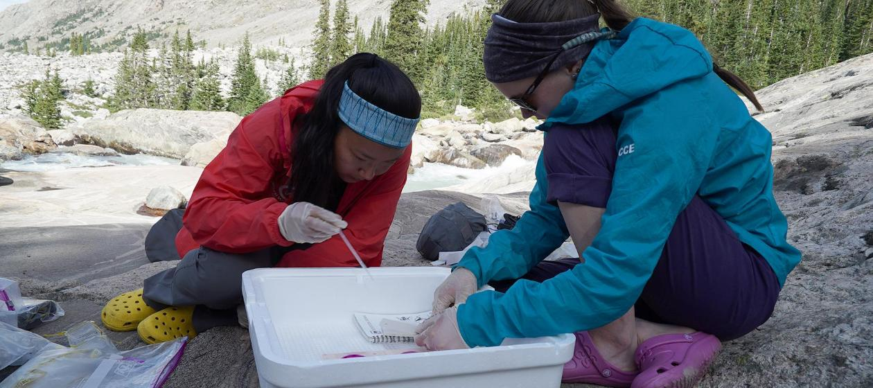 Two students running a test on high mountain water.