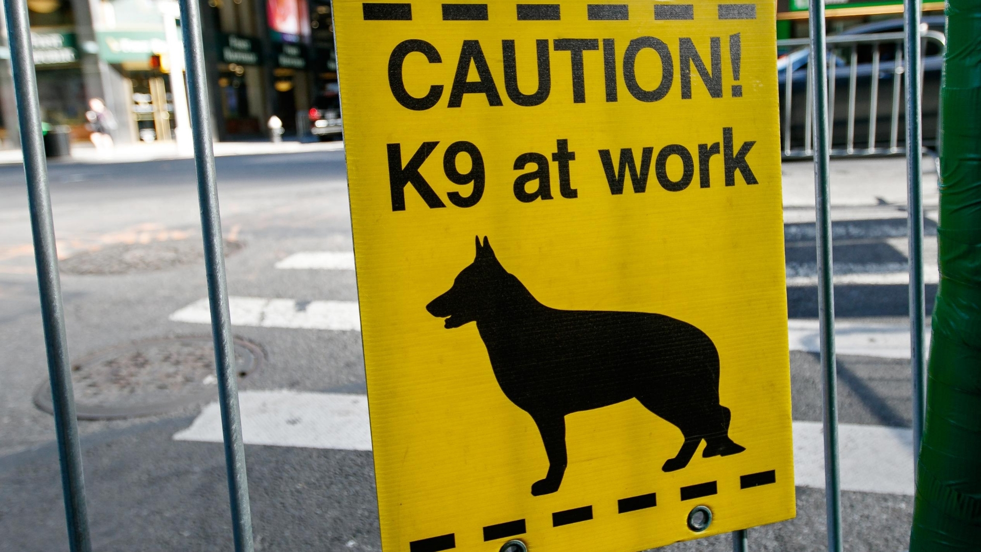 image of a sign that says Caution K9 at work with a graphic of a dog